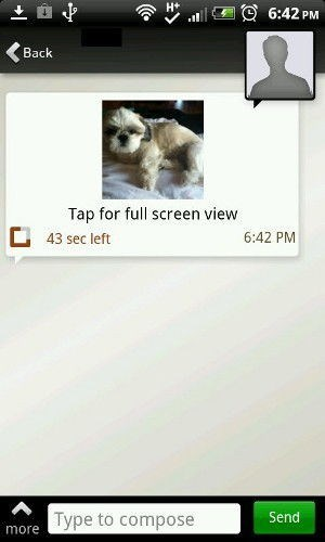 dog pic in Tiger Text app