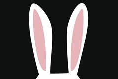 7 Things to Know About Rabbit Vibrators