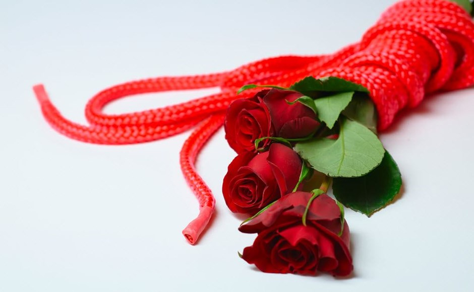 Roses wrapped in bondage rope