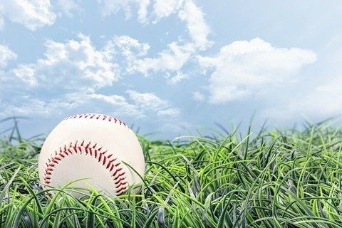 Cartoon: The Baseball-Sex Metaphor Explained