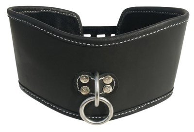 Sportsheets Edge Soft Leather Posture Collar - A sexy, yet comfortable, collar designed to restrict the neck.