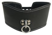 Sportsheets Edge Soft Leather Posture Collar