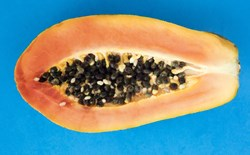 Papaya that resembles a vulva