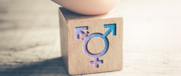 gender neutrality: a wooden block with connected gender symbols is shown